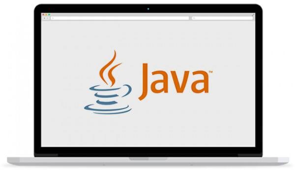 Desenvolupem aplicacions a mida basades en els estàndards Java EE